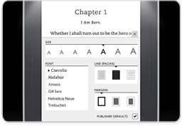 Customizable Display for NOOK Simple Touch GlowLight